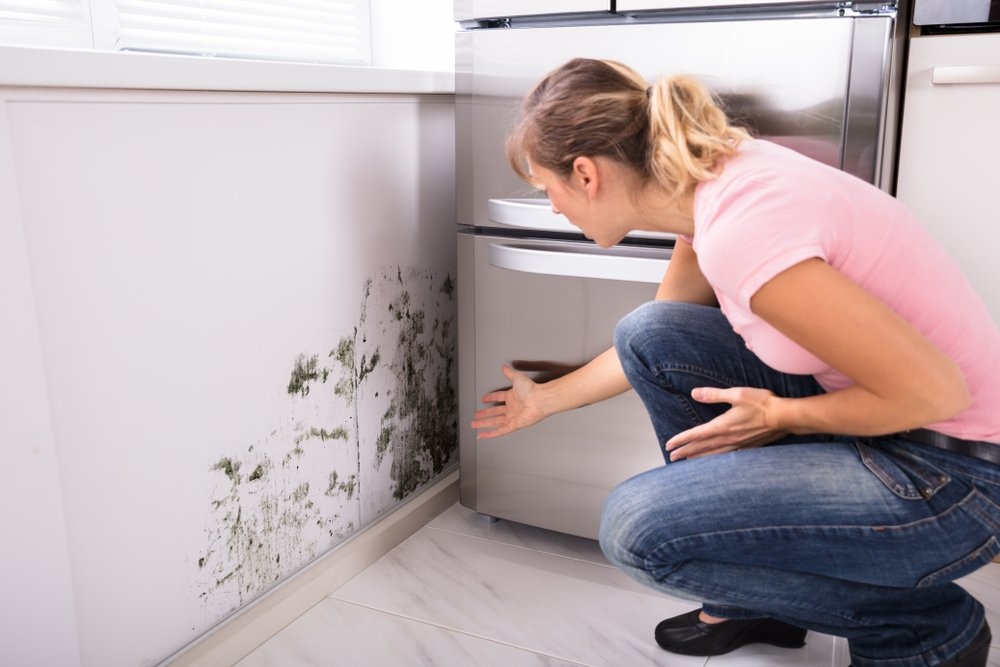 woman encounters mould in home