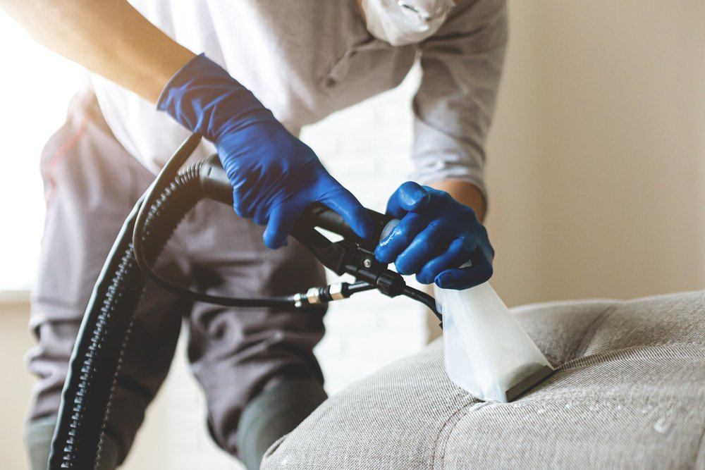 professional cleaning tool being used to remove dirt from a couch