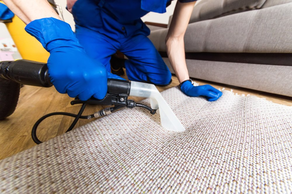 pro carpet cleaner working